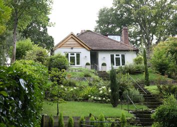 Thumbnail 2 bed detached bungalow to rent in Marley Lane, Haslemere
