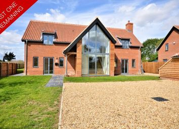 Thumbnail 4 bed detached house for sale in Reymerston, Norwich