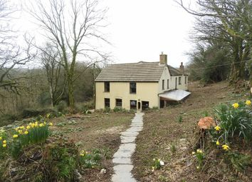 Thumbnail 4 bed property for sale in Capel Iwan, Newcastle Emlyn