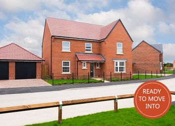"""Thumbnail 5 bedroom detached house for sale in """"Manning"""" at Hanzard Drive, Wynyard Business Park, Wynyard, Billingham"""