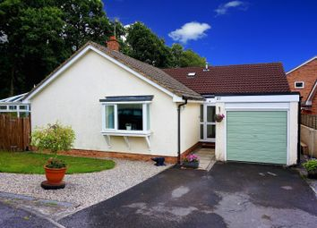 Thumbnail 3 bed detached bungalow for sale in Kiln Close, Bovey Tracey