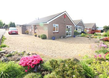 Thumbnail 3 bedroom bungalow for sale in Quarry Rise, Undy, Caldicot