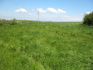 Thumbnail Land for sale in Candlefort, Inniskeen, Co. Monaghan