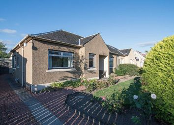 Thumbnail 3 bed detached bungalow for sale in Ochil Road, Causewyhead, Stirling