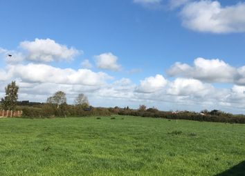 Thumbnail Land for sale in Ballincolly, Charleville, Cork