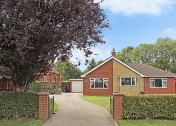 Thumbnail 4 bed detached bungalow for sale in School Lane, Great Steeping, Spilsby