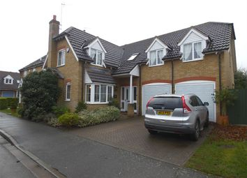 Thumbnail Detached house to rent in Perkins Lane, Maxey, Peterborough, Cambridgeshire