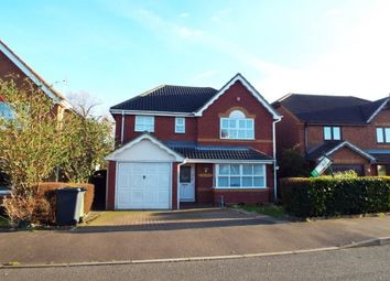 Thumbnail 4 bed property to rent in Knipe Close, Huntingdon