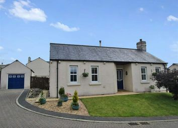 Thumbnail 2 bed detached bungalow to rent in Rook Farm Close, Tallentire, Cockermouth