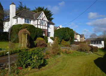 Thumbnail 4 bed detached house for sale in Dart Bridge Road, Buckfastleigh, Devon