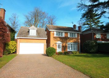 Thumbnail 4 bedroom detached house to rent in Falmouth Gardens, Newmarket