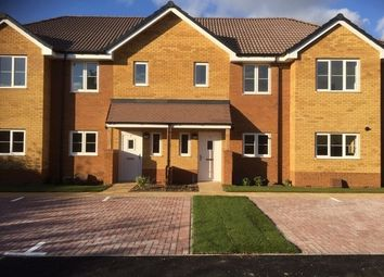 Thumbnail 2 bed terraced house for sale in Steamer Croft, Langford, Biggleswade