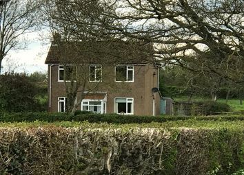 Thumbnail 3 bed detached house to rent in East Street, West Pennard