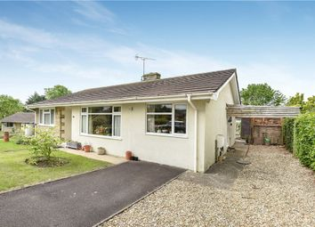 Thumbnail 2 bed detached bungalow for sale in Manor Gardens, Beaminster, Dorset