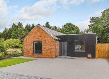 Thumbnail 2 bed detached bungalow for sale in Stock Road, Stock, Ingatestone