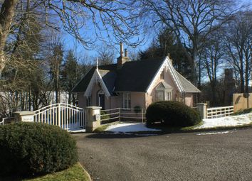 Thumbnail 2 bed detached house to rent in Newton, Insch, Aberdeenshire