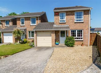 Thumbnail 3 bed link-detached house for sale in Hawks Park, Lower Burraton, Saltash, Cornwall