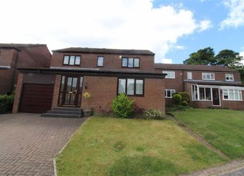 Thumbnail 4 bed detached house for sale in The Farthings, Usworth, Washington