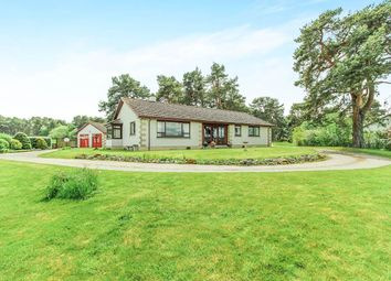 Thumbnail 4 bed bungalow for sale in Easter Kinkell, Conon Bridge, Dingwall