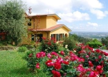 Thumbnail 8 bed villa for sale in Camaiore, Lucca, Tuscany, Italy