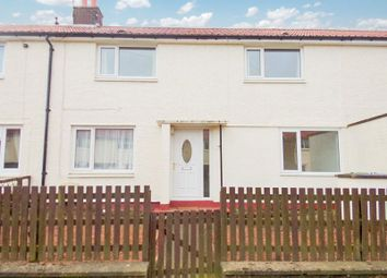 Thumbnail 3 bedroom terraced house to rent in Lee Avenue, Shilbottle, Alnwick