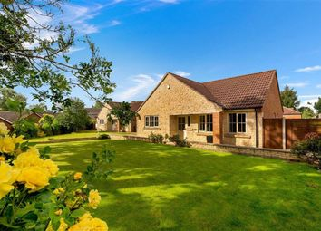 Thumbnail 3 bed bungalow for sale in Old Pond Close, Lincoln