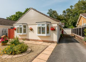 Thumbnail 3 bed bungalow for sale in Pennington Road, Ferndown