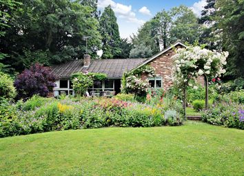 Thumbnail 5 bed bungalow to rent in Abbey Mill End, St Albans