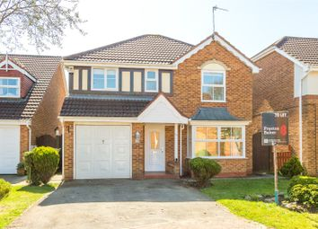 Thumbnail 4 bed detached house to rent in Etty Close, Stamford Bridge, York