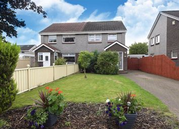 Thumbnail 3 bed semi-detached house for sale in Almond Avenue, Renfrew