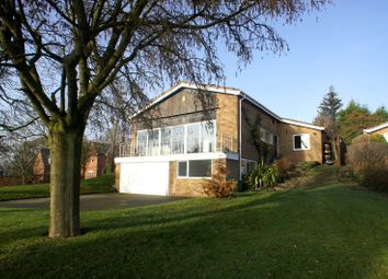 Thumbnail 4 bed detached house to rent in Burley Lane, Quarndon, Derby