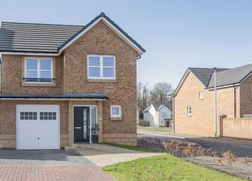 Thumbnail 3 bed detached house for sale in Thistle Avenue, Tygetshaugh Court, Denny