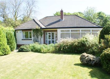 Thumbnail 3 bed bungalow for sale in Smallhope Drive, Lanchester, Durham