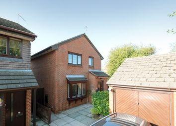 Thumbnail 4 bed detached house for sale in Margaret Gardner Drive, London