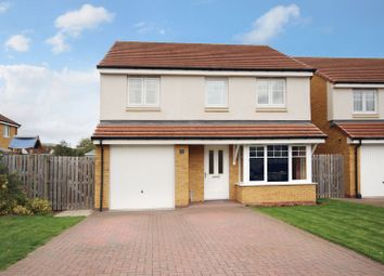 Thumbnail 4 bed detached house for sale in Garganey, Alloa