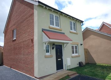 Thumbnail 4 bed detached house to rent in Shearwater Way, Seaton