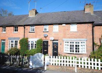 Thumbnail 3 bed cottage to rent in The Terrace, Ascot