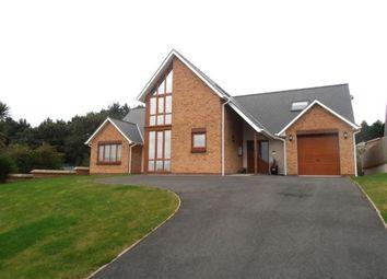 Thumbnail Property to rent in Caer Wylan, Llanbadarn Fawr, Aberystwyth