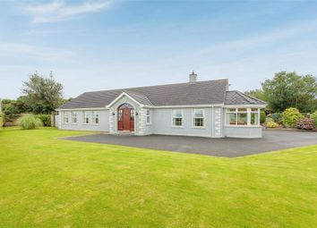 Thumbnail 4 bed detached bungalow for sale in Scaddy Road, Downpatrick, County Down