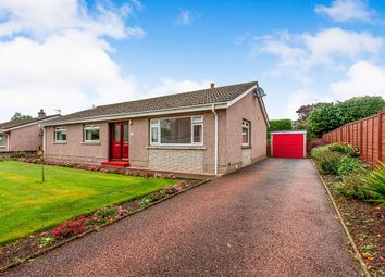 Thumbnail 3 bed bungalow for sale in Borrowfield Road, Montrose