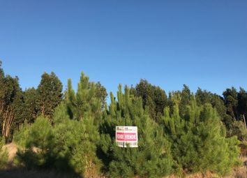 Thumbnail Land for sale in Nadadouro, Nadadouro, Caldas Da Rainha