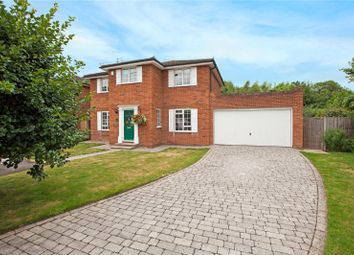 Thumbnail 4 bedroom detached house for sale in Silvertrees Drive, Maidenhead, Berkshire