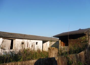 Thumbnail 3 bedroom bungalow for sale in Former Piggeries At, Thurning Road, Briston, Norfolk