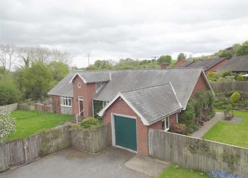 Thumbnail 3 bed detached bungalow for sale in The Old Orchard, Kerry Road, Montgomery, Powys