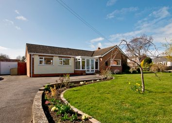 Thumbnail 3 bed detached bungalow for sale in Tanhouse Lane, Malvern