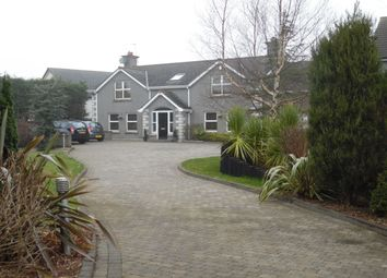 Thumbnail 4 bed detached house to rent in Kingsmoss Road, Newtownabbey