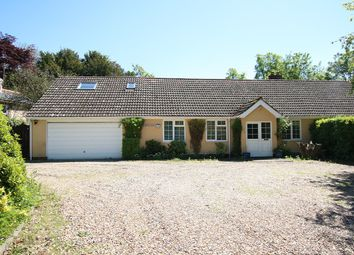 Thumbnail 5 bed bungalow for sale in The Green, Flowton, Ipswich, Suffolk