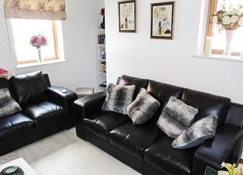 Thumbnail 4 bed semi-detached house to rent in 1 Emily Court, Swansea