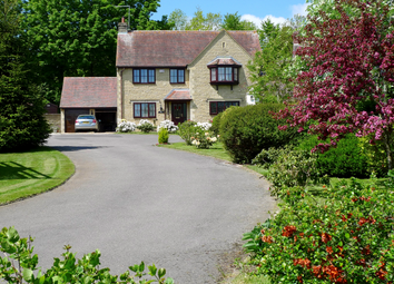 Thumbnail 4 bed detached house for sale in Hambledon, The Sycamores, Bourton, Dorset