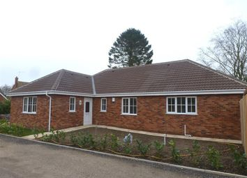 Thumbnail 4 bedroom bungalow to rent in Greenacre Close, Mattishall, Dereham